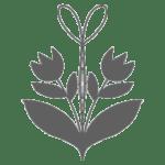 Sustainability-icon